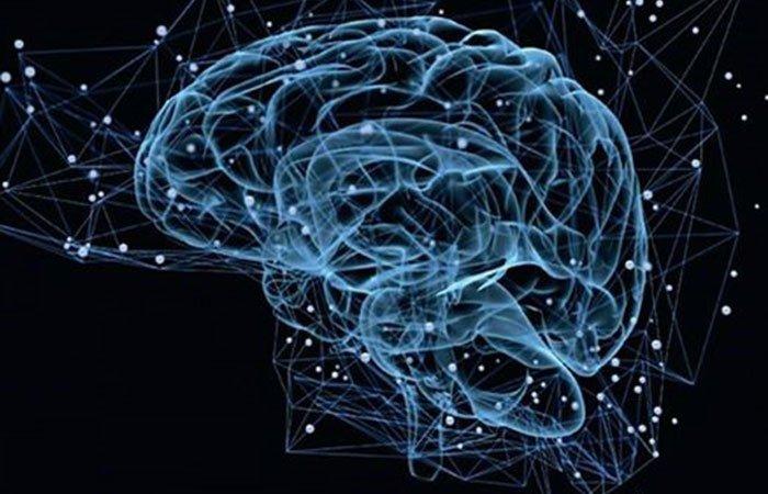 Illustrazione di un cervello astratto